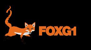 International FOXG1 Foundation