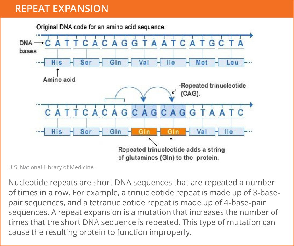 Genetic_Mutations_Repeat Expansion